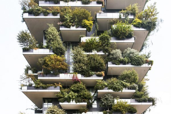 """Architects Building """"Vertical Forest"""" in Egypt"""