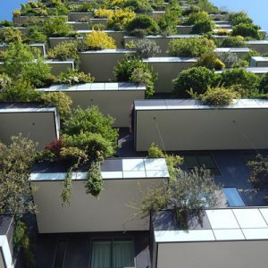 Product Image Environmental Design for Buildings Best Practices for the Best Design